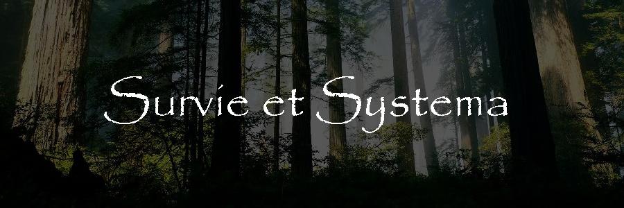 Stage Survie – Systema